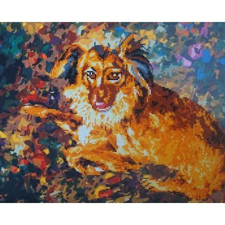 Купить Набор для творчества Color Kit «Алмазная мозаика». Рисунок: «Породистый пес»