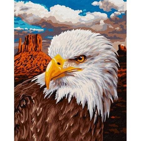 Купить Набор для рисования по номерам Schipper «Белоголовый орлан»