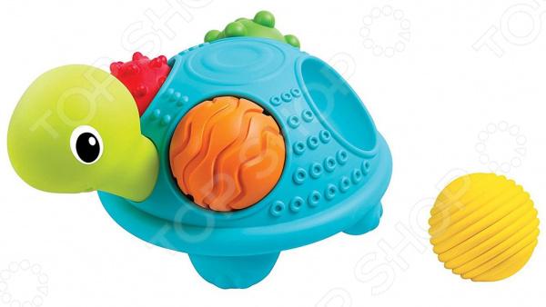 Игрушка развивающая для малыша B kids «Черепашка» игрушка черепашка b kids