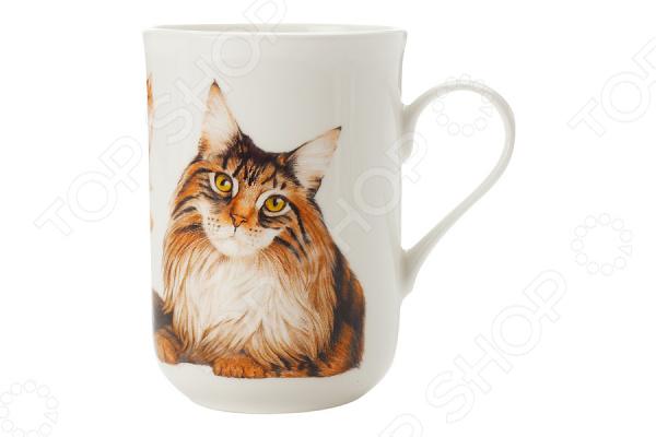 Кружка Maxwell&Williams «Мейн-кун» куплю кота мейн кун полукровки за 1000 рублей в москве