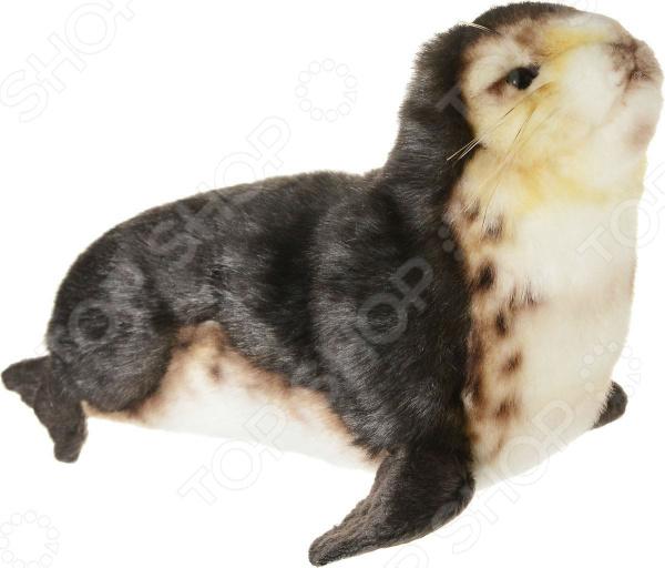 Zakazat.ru: Мягкая игрушка Hansa «Детеныш тюленя-монаха»