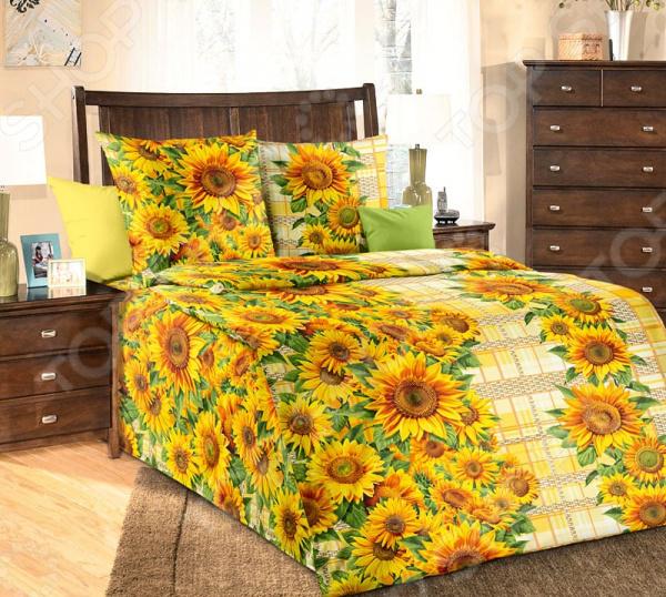 Комплект постельного белья Белиссимо «Зарница: Подсолнухи». 1,5-спальный