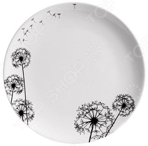 Тарелка обеденная Esprado Viente сушилка подвесная esprado platinos 0014426e212