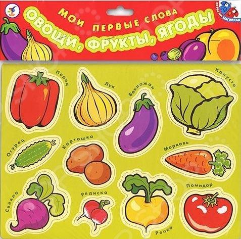 Игра магнитная обучающая Дрофа «Мои первые слова. Овощи, фрукты, ягоды»