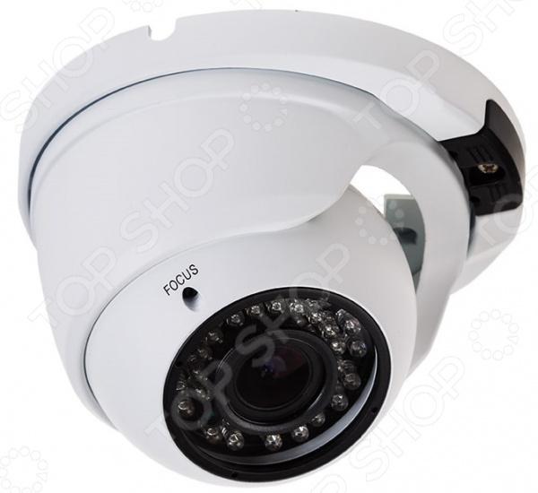 IP-камера купольная уличная Rexant 45-0271