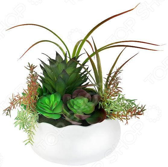 Декоративные цветы Dream Garden «Суккуленты» в вазе