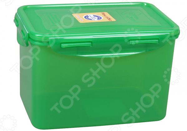 Контейнер для продуктов прямоугольный Rosenberg RUS-575019-G