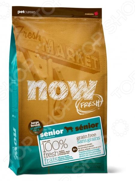 ���� ����� ��� ����� ������� ����� ����������� NOW Fresh Senior Large Breed Recipe Grain Free
