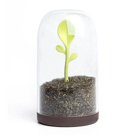 Купить Контейнер для сыпучих продуктов Qualy Sprout Jar