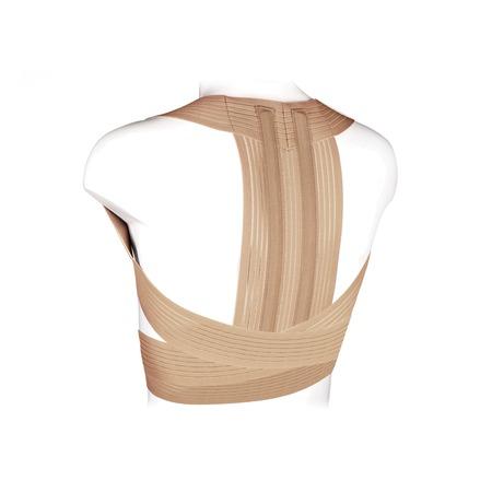 Купить Реклинатор ортопедический Ecoten KK-05