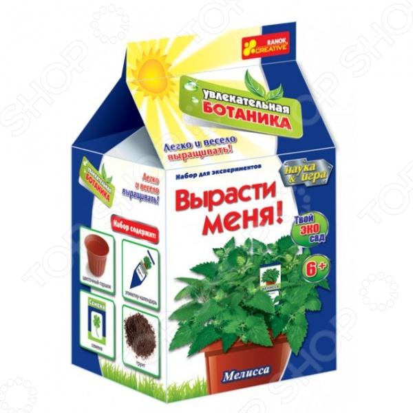 Набор для выращивания Ранок «Вырасти меня. Мелисса» наборы для выращивания вырасти дерево набор для выращивания розмарин