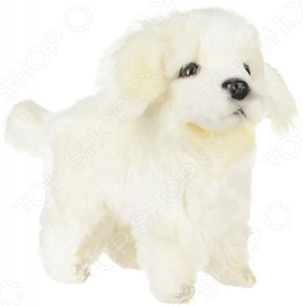 Мягкая игрушка Hansa «Щенок Мареммано-Абруццкой овчарки» купить щенка немецкая овчарки белого окраса цена видео картинки
