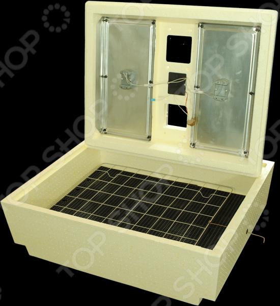 Инкубатор Золушка ИК 70/220В (М)