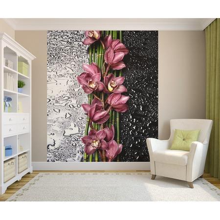 Купить Фотообои ТамиТекс «Орхидея на стекле». Количество полотен: 2 шт