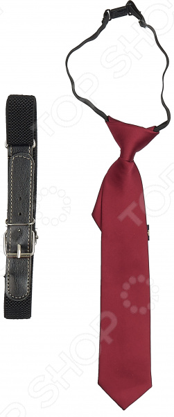 Набор: галстук и ремень 1732569