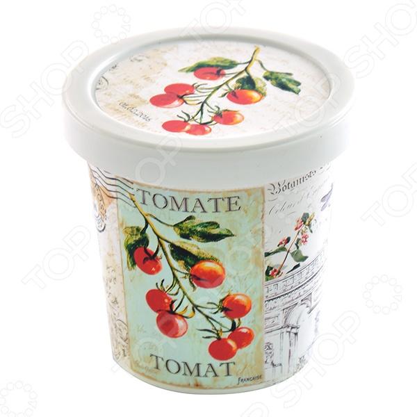 Набор для выращивания Rostokvisa «Томат» наборы для выращивания rostokvisa набор для выращивания настурция