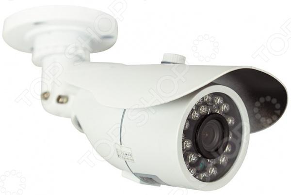 Камера видеонаблюдения цилиндрическая уличная Rexant 45-0132