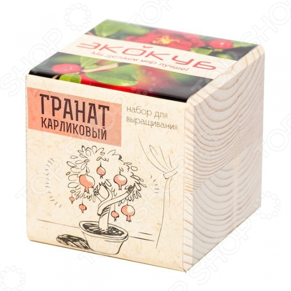 Набор для выращивания Экокуб «Гранат карликовый» фигурка карликовый козел schleich фигурка карликовый козел