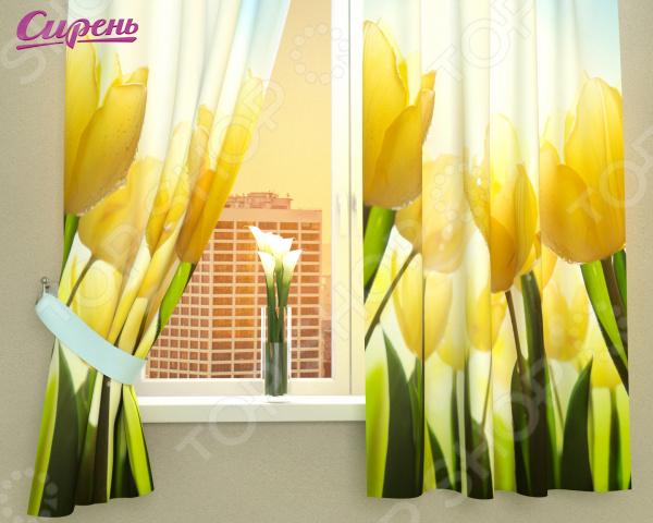 Фотошторы Сирень «Тюльпаны»