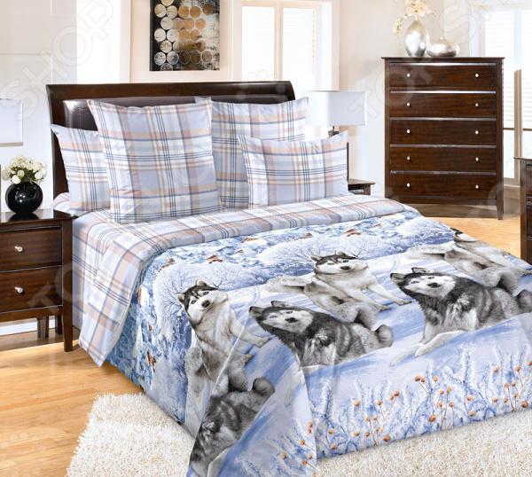 Комплект постельного белья Королевское Искушение «Хаски». Евро