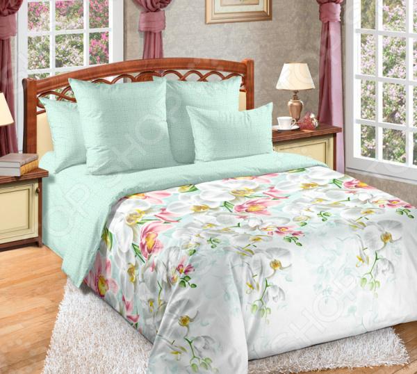 цена Комплект постельного белья ТексДизайн «Николь» онлайн в 2017 году