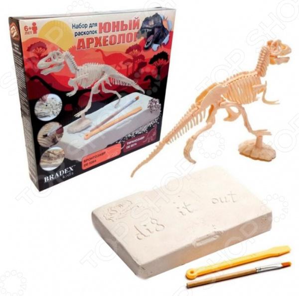 Набор для раскопок Bradex «Юный археолог. Бронтозавр»
