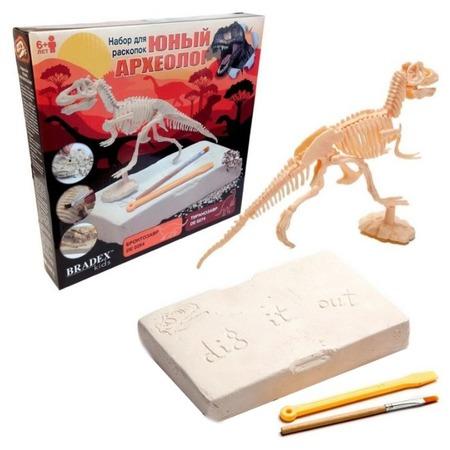Купить Набор для раскопок Bradex «Юный археолог. Бронтозавр»