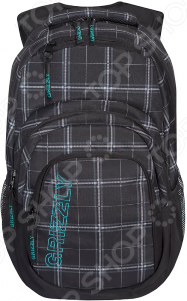 Рюкзак молодежный Grizzly RU-704-2/3