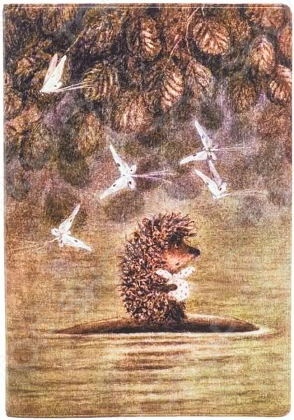 Обложка для автодокументов кожаная Mitya Veselkov «Ежик плывет»