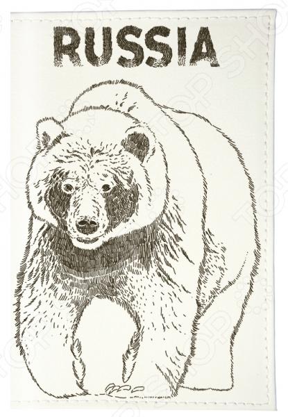 Обложка для автодокументов Mitya Veselkov «Медведь»