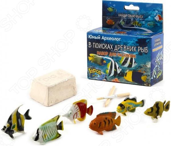 Набор для раскопок Город игр «В поисках древних рыб». В ассортименте