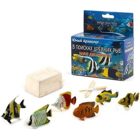 Купить Набор для раскопок Город игр «В поисках древних рыб». В ассортименте