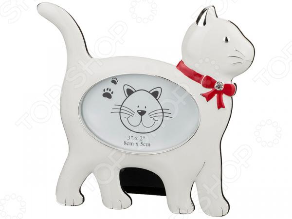 Фоторамка «Кошка» 363-490