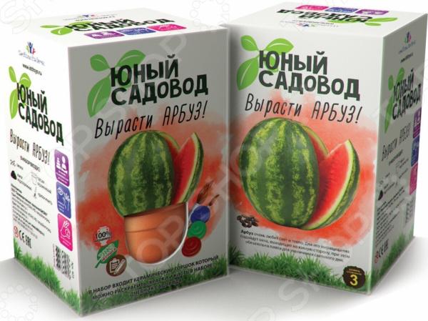 Набор для выращивания Юный Садовод «Вырасти арбуз»
