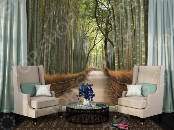 Фотообои ТамиТекс «Бамбуковый лес»