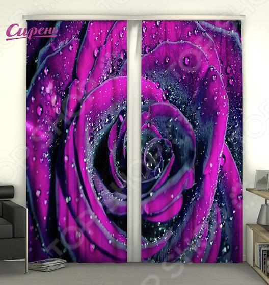 Фотошторы Сирень «Пурпурная роза» шторы томдом классические шторы менак цвет пыльная роза