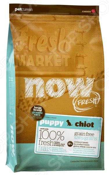 Корм сухой для щенков крупных пород беззерновой NOW Fresh Puppy Large Breed Recipe Grain Free