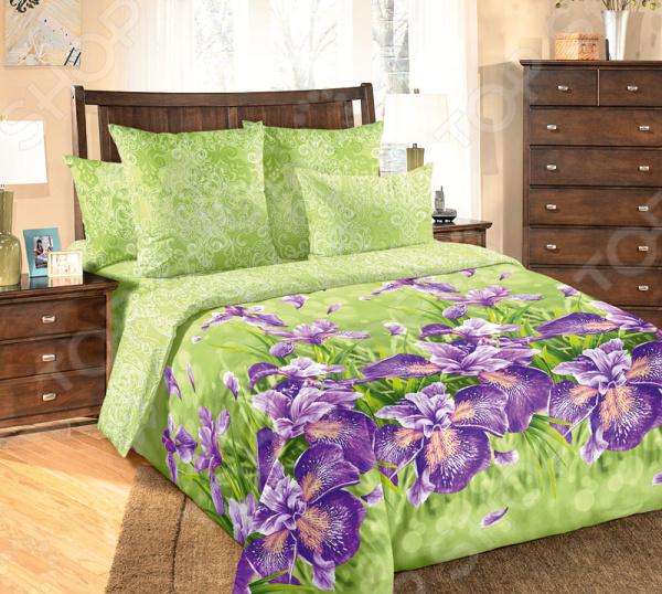 Комплект постельного белья Королевское Искушение «Анастасия». 1,5-спальный