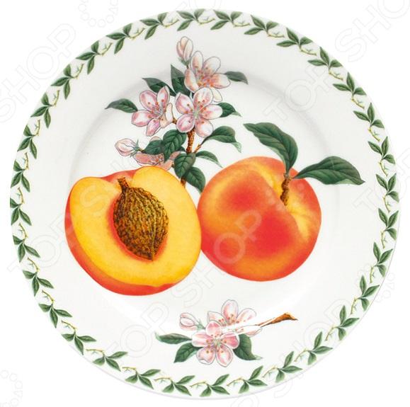 Тарелка десертная Maxwell&Williams «Абрикос» столовая посуда maxwell