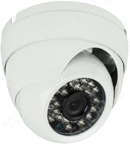 IP-камера купольная уличная Rexant 45-0251