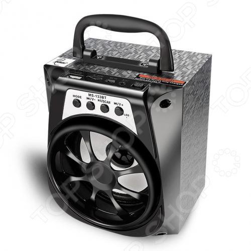 Система акустическая портативная MS-133 Вт. В ассортименте
