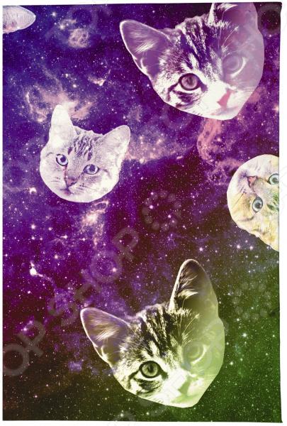 Визитница Mitya Veselkov «Сны о кошках» визитницы mitya veselkov визитница олени на черном
