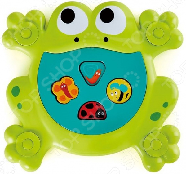 Игрушка для купания Hape «Накорми лягушку»