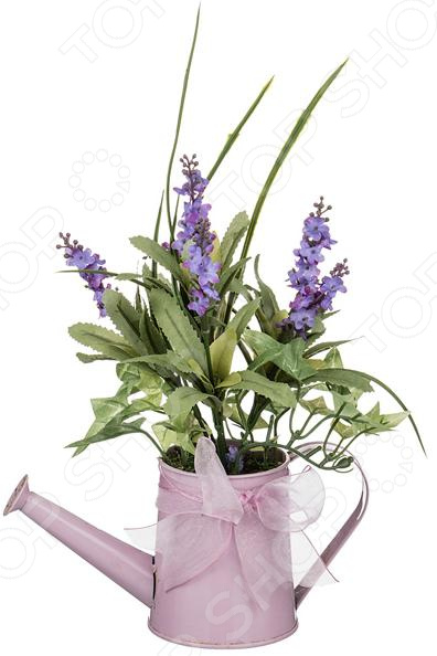Декоративные цветы 70-541 куплю декоративные растения в севастополе