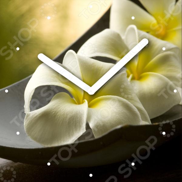 Часы настенные Innova «Цветы» W09665