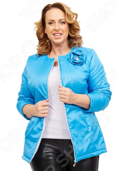 Куртка СВМ-ПРИНТ «Тонкий вкус». Цвет: голубой