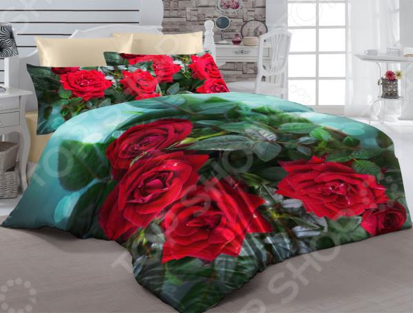 Комплект постельного белья ТамиТекс «Пурпурное сердце»