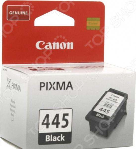 Картридж струйный Canon PG-445