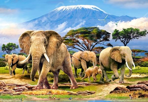 Пазл 1000 элементов Castorland «Слоны»