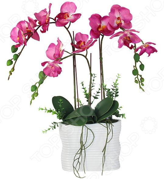 Декоративные цветы Dream Garden «Орхидея тем розовая» в вазе куплю декоративные растения в севастополе